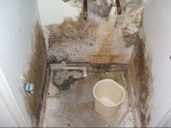 Запущенная стадия грибка в туалете