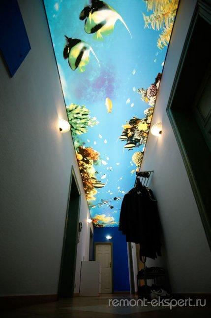 аквариум 3д потолок